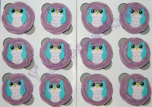 cupcakes owl aisha