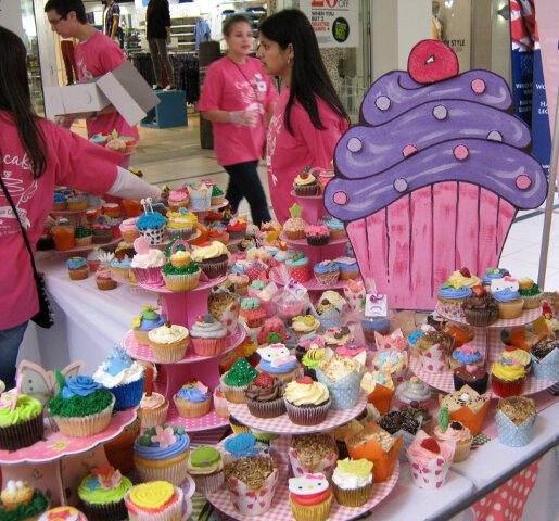 cupcakes for kids with cancer 2014 - 8